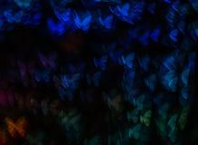 Noc zaświeca bokeh motyliego kształt, defocused bokeh światła, plama Fotografia Stock