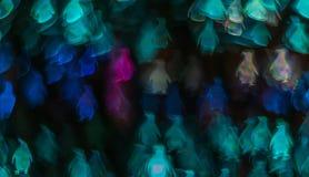 Noc zaświeca bokeh pingwinu kształt, defocused bokeh światła, blurre Obrazy Stock