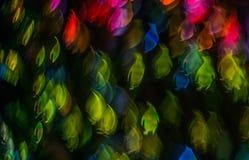 Noc zaświeca bokeh pingwinu kształt, defocused bokeh światła, blurre Zdjęcie Royalty Free