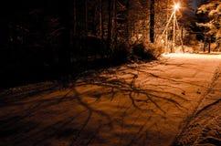 noc zima ulicznych chodzących krajobrazowi ludzie Rozjarzony lamppost iluminuje snowed gałąź drzewa Cienie na drodze fotografia stock