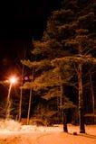 noc zima ulicznych chodzących krajobrazowi ludzie Rozjarzony lamppost iluminuje snowed gałąź drzewa i drogę obraz royalty free