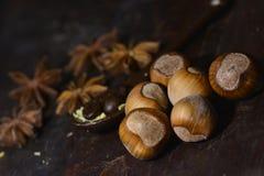 Nocciola su un fondo marrone Fotografia Stock Libera da Diritti
