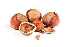 Nocciole Nuts Fotografia Stock Libera da Diritti