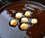 Nocciole in un cioccolato fuso Fotografia Stock