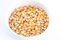 Noccioli del popcorn Fotografia Stock