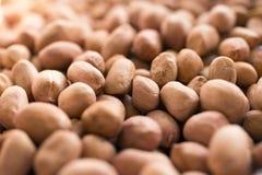 Noccioli dell'arachide Immagine Stock