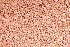 Noccioli dell'arachide Immagini Stock Libere da Diritti
