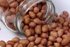 Noccioli dell'arachide Immagine Stock Libera da Diritti
