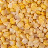 Noccioli di cereale Immagini Stock