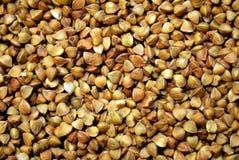 Nocciolo del grano saraceno immagine stock