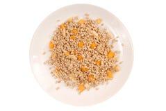 Nocciolo germogliato di grano saraceno e dei pezzi di frutti Fotografia Stock Libera da Diritti