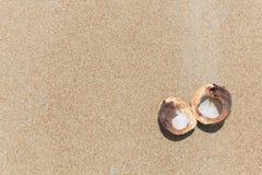 Noce di cocco aperta sulla sabbia fotografie stock