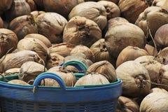 Noce di cocco in cestino Fotografie Stock Libere da Diritti