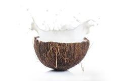 Noce di cocco che spruzza latte Fotografie Stock Libere da Diritti