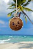 Noce di cocco con febbre dell'isola! Fotografia Stock Libera da Diritti