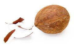 Noce di cocco con i pezzi Immagine Stock
