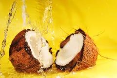 Noce di cocco con la spruzzata dell'acqua Fotografie Stock