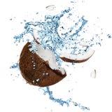 Noce di cocco con la spruzzatura dell'acqua fotografie stock
