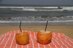 Noce di cocco dalla spiaggia fotografie stock