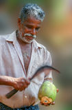 Noce di cocco della sbucciatura Fotografia Stock