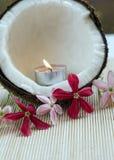Noce di cocco di concetto della stazione termale con i fiori Fotografia Stock