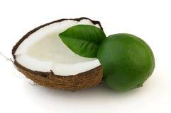 Noce di cocco e calce immagine stock