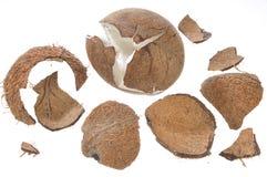 Noce di cocco e parti delle sue coperture Immagini Stock