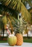 Noce di cocco ed ananas Fotografie Stock Libere da Diritti