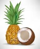 Noce di cocco ed ananas incrinati royalty illustrazione gratis
