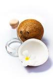 Noce di cocco ed olio di noce di cocco immagine stock