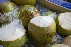 Noce di cocco fresca in acqua e ghiaccio Immagini Stock Libere da Diritti