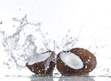 Noce di cocco fresca con la spruzzata dell'acqua Fotografia Stock