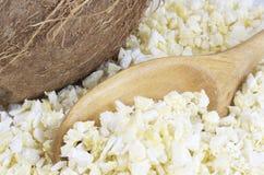 Noce di cocco fresca secca Immagini Stock Libere da Diritti