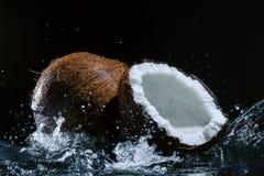 Noce di cocco incrinata Immagine Stock Libera da Diritti