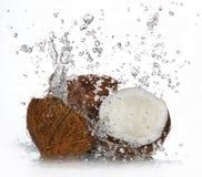 Noce di cocco incrinata Fotografia Stock