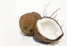 Noce di cocco matura divisa in due Fotografia Stock