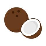 Noce di cocco piana dell'icona Immagine Stock