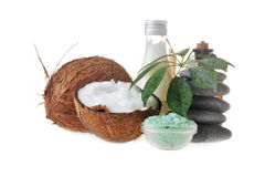Noce di cocco, sale e pietre Fotografia Stock Libera da Diritti