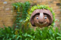 Noce di cocco sorridente del fronte Fotografia Stock