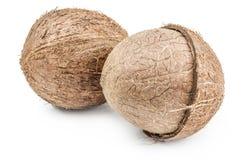 Noce di cocco su bianco Fotografia Stock Libera da Diritti