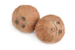 Noce di cocco su bianco Immagini Stock
