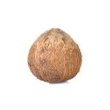 Noce di cocco su fondo bianco Fotografie Stock Libere da Diritti