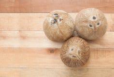 Noce di cocco su legno Fotografia Stock
