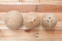 Noce di cocco su legno Fotografie Stock Libere da Diritti