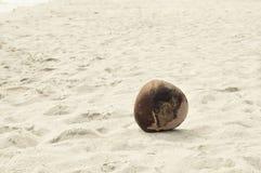 Noce di cocco sulla spiaggia Fotografia Stock