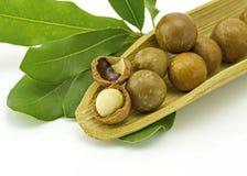 Noce di macadamia nelle coperture Immagini Stock Libere da Diritti