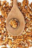 Noce sul cucchiaio di legno Immagini Stock