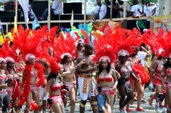 Noceurs de Caribana Photos libres de droits