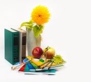 Noch bezüglich der Schule. Lehrer-Tag Stockbilder
