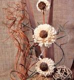 Noch Leben Blumen u. curles Stockfoto
